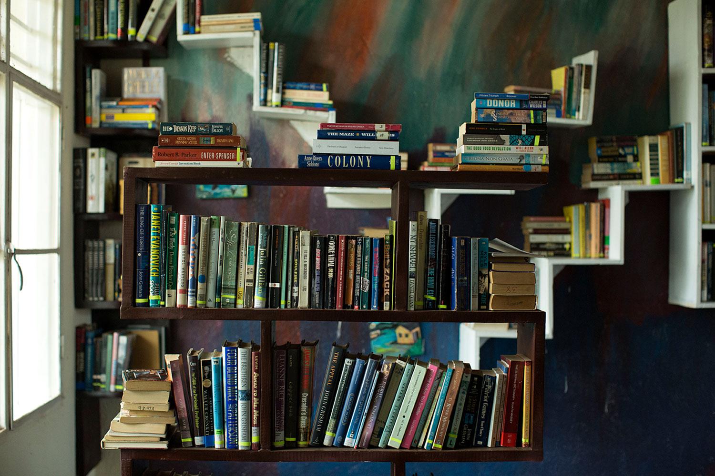 Algunos de los libros de White Dove Global Prep.