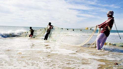 Three fishermen are struggling to pull up the fishing net consisting of assembled mosquito net. The increasing use of mosquito net in the fishing is one of the largest threats to the fish stock in Angoche. The CARE and WWF program, P&S is working with loc