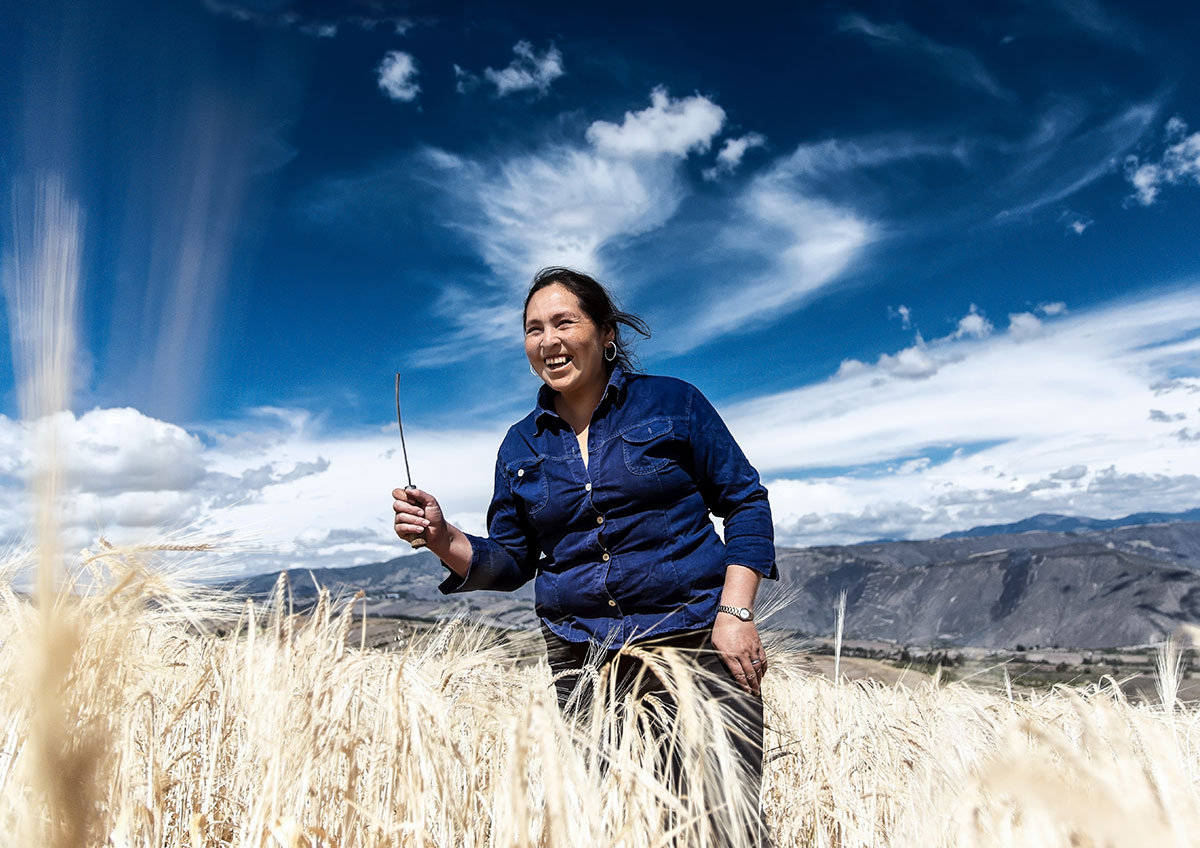 A woman smiles while walking through a lush field of wheat. Behind her is a bright blue sky with white clouds.