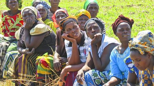 Women farmers in Kanchele take a break from working in the fields, where they grow cabbage, green maize, okra, onion, rape and tomatoes, ensuring food security for their community. Mara O'Brien/CARE