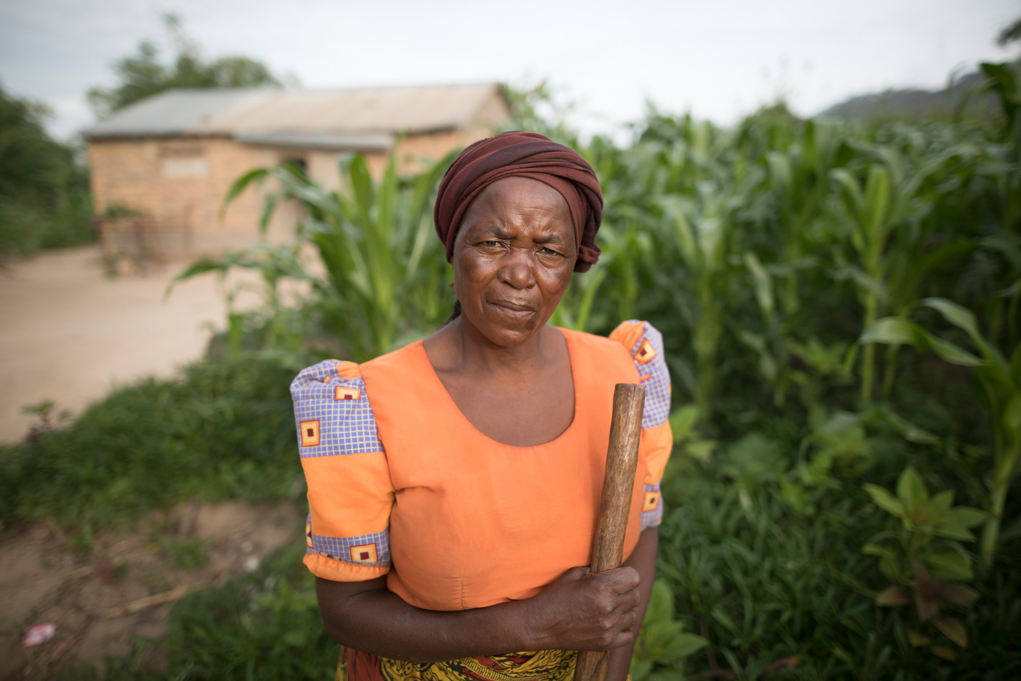 A woman in Tanzania stands in a field of maize.