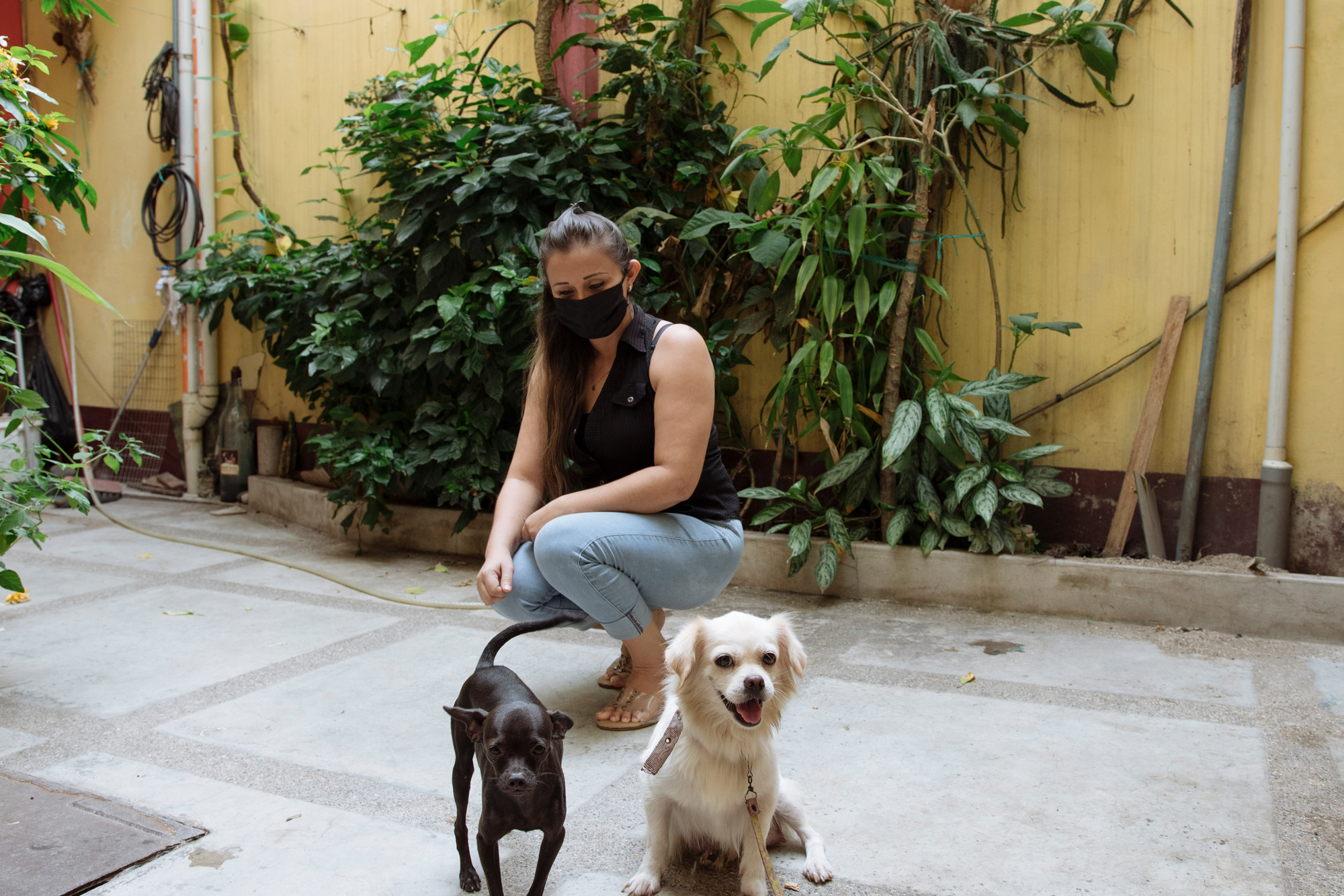 A woman in a face mask kneels while looking at two dogs in front of her.