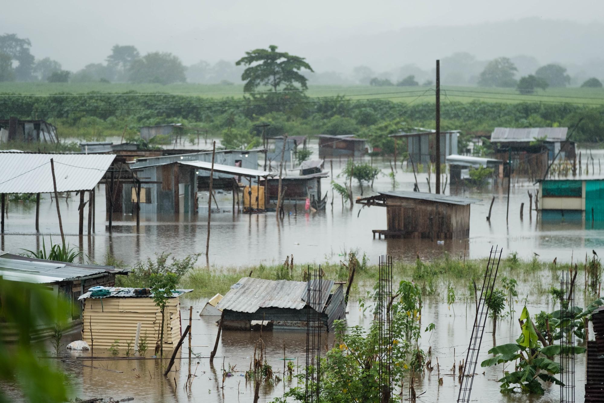 Una ciudad está inundada de agua que casi llega a la parte superior de los edificios.
