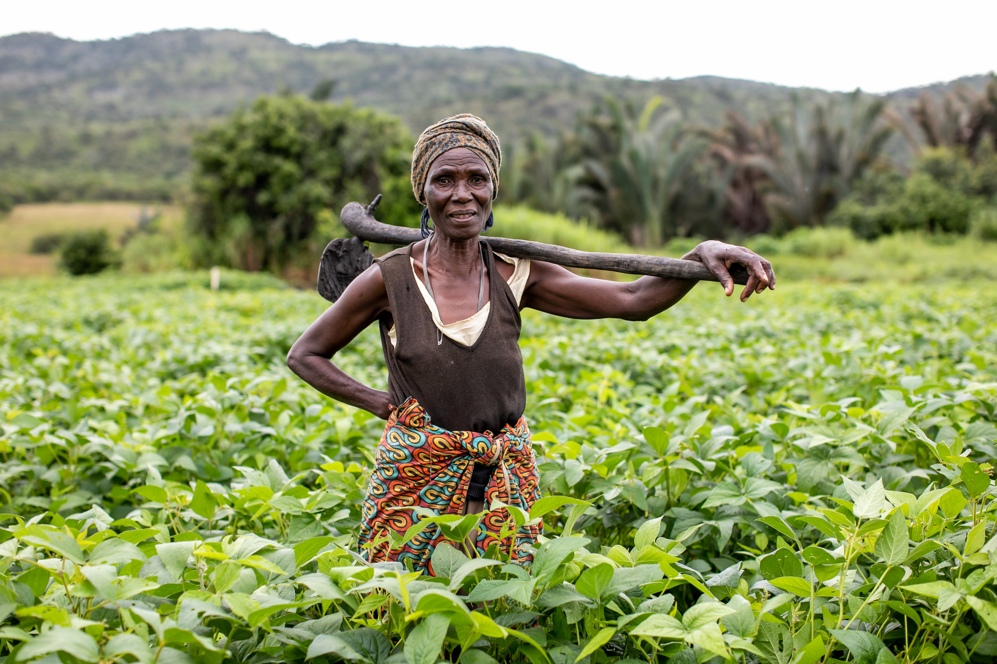 A woman stands in a field of plans with a hoe on her shoulder.