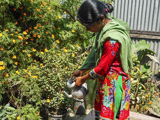 A lady wearing a red dress and a green scarf is watering a garden of flowers.