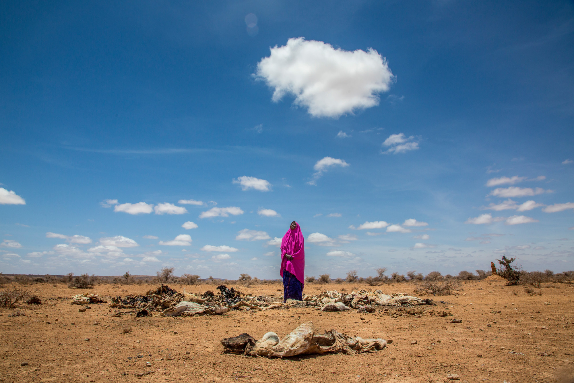 A woman stands in a dry field.
